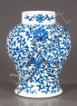 Blue and white Chinese porcelain jar with scroll and floral decoration, 13