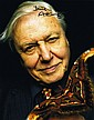ATTENBOROUGH, DAVID autographed photograph signed