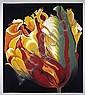 Lowell Blair Nesbitt, Parrot Tulip I, Serigraph