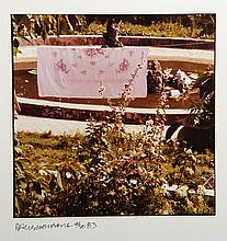 Robert Rauschenberg, Pink Flower Sheet, Chinese Summerhall, C-Print Photograph