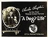 CHARLIE CHAPLIN FULL SET OF 'A DOG'S LIFE' LOBBY CARDS.