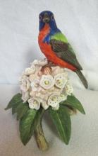 Limited Edition RSBP Bird Perched on Flower