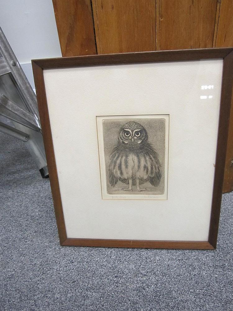 Owl Etching Sheridan Oman
