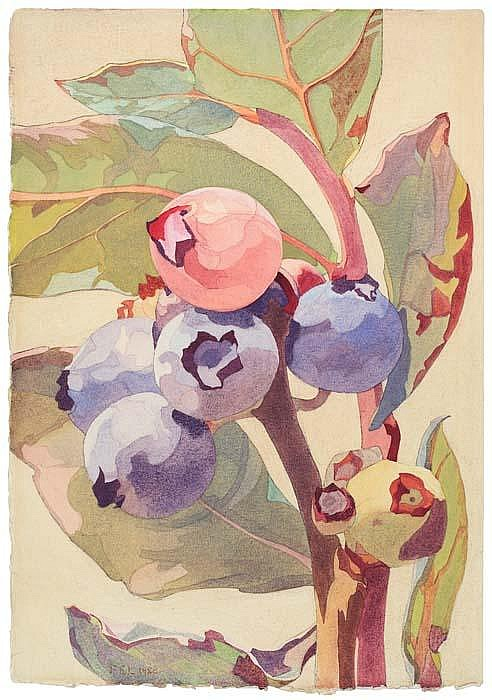 FRANK EDWARD LLOYD Blueberries.