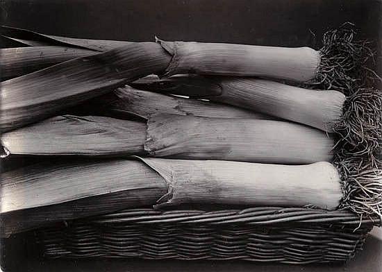 JONES, CHARLES (1866-1959)