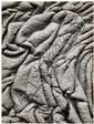 Lucien Clergue (né en 1934) Le Marais d'Arles, Algues,1962 Épreuve argentique, datée et légendée à la mine de plomb et portant le ca...