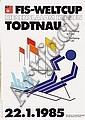 Poster: Fis-Weltcup Todtnau
