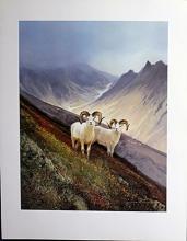 Fine Art Print After Michael Coleman(207N)
