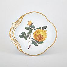 Derby 'Double Yellow Rose' Botanical Shell Dish, c.1815, width 10.1