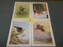 Set of 4, 1975, Wood chuck, Deer, Pheasant, Wood Cock Prints