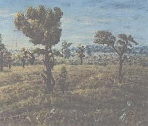 Helen (Mmakgabo Mapula) Sebidi (1943-)  A LITTLE LANDSCAPE NEAR BLOEMFONTEIN, 1977  signed, marked with the title on a label on the reverse on board 23,5 by 28cm PROVENANCE:  The Everard Read Gallery, Johannesburg ILLUSTRATED