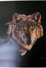 Grey Wolf by Pat Baker (N)