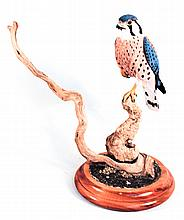 Finely Carved and Painted American Kestrel