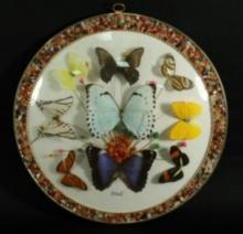 BRASIL BUTTERFLY WALL PLAQUE