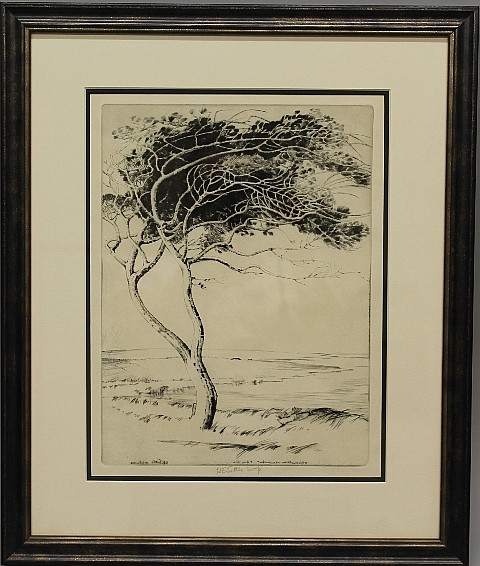 Framed Etching - Large Tree in the Breeze by H.E. Tuttle