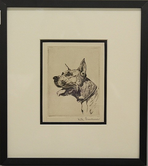 Framed Etching - Great Dane Dog by Rita Swann