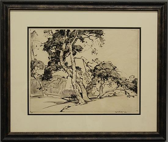 Framed Etching - Sequoia Trees by Alfred Hutty