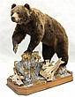 Mountain Grizzly Bear full body mount - Yukon