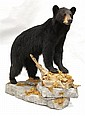 Black Bear full body mount -PA