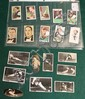 Lot of 19 pc. Various English tobacco / cigarette cards including Churchman, Park Drive, Gallahers, Etc.