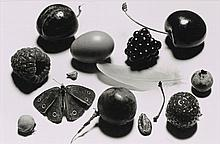 Irving PENN (1917-2009) STILL LIFE WITH GRAPE AND MOTH (B), NEW YORK, 1976 Tirage argentique viré au sélénium réalisé en 2002