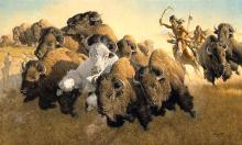 Frank C. Mccarthy - In Pursuit Of The White Buffalo