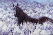 Mustang in the Sage by Jim Rey