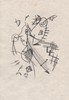 KURT SCHWITTERS - Charcoal drawing, Kurt Schwitters, $6,000