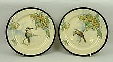 A pair of Royal Doulton pottery series ware plates