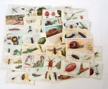 1914 WILLS CIGARETTE TOBACCO CARDS