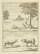 [Husbandry]. Chomel, N. Algemeen huishoudelijk-, natuur-, zedekundig- en konst- woordenboek, Vervattende veele middelen om zijn goed te vermeerderen, en zijne gezondheid te behouden (...). Leyden/ Leeuw., J. le Mair/ H.A. de Chalmot, 1778, 6 vols.