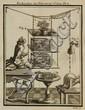 [Electricity]. Nollet, J.A. Recherches sur les