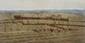 Cecil Aldin (d'après). «chasse au renard». Quatre gravures couleur ressignées au crayon dans la marge. (qq rousseurs). 44 x 75.5 cm à vue