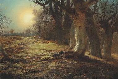 Andrew McCallum (1821-1902)