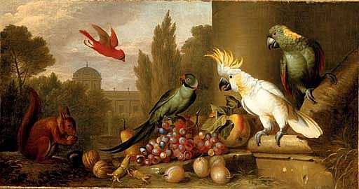 A Cardinal, a Plum-Headed Parakeet, a Lesser Sulphur-Crested Cockatoo, a Yellow-Naped Amazon, and a squirrel with grapes, apples, plums and walnuts in a ruin, a city beyond