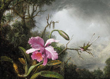 Martin Johnson Heade (1819-1904)