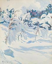Snowladen Birches
