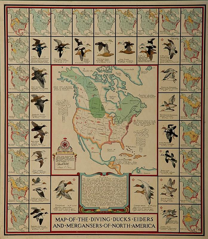 Richard E. Bishop (1887)  Map of Diving Ducks