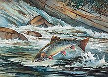 Leaping Brook Trout