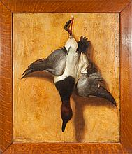 Hanging Canvasback