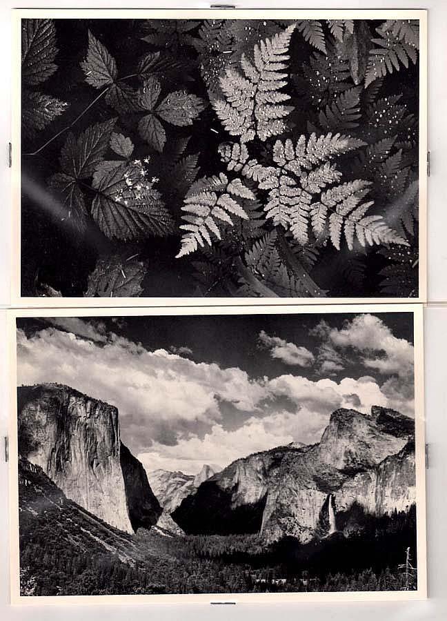ADAMS,  ANSEL,(American 1902-1984)