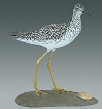 Life Size Yellowlegs on Shell by Franco