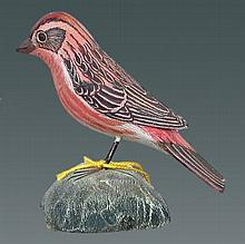 Purple Finch by Jess Blackstone