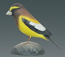 Evening Grosbeak by Jess Blackstone #104