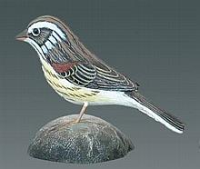 Vesper Sparrow by Jess Blackstone #41