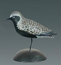Miniature Black Bellied Plover by A. E. Crowell