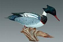 Miniature Merganser Drake by James Lapham