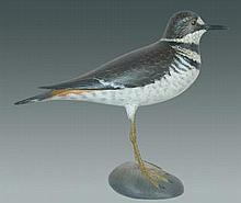 Life Size Killdeer by Crowell