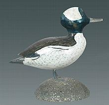 Miniature Bufflehead Drake by Ralph Laurie