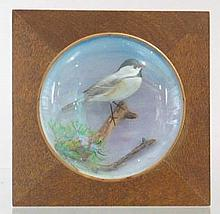 Mini Wall Mount Chickadee by Peltier 788.
